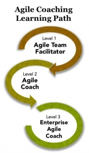 https://www.agilecoachinginstitute.com/coaching-courses-industry-certifications/